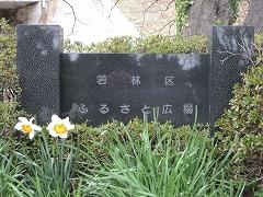 七郷堀2012.4.22-3