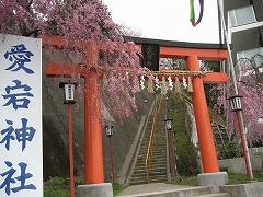 愛宕神社2012.4.24-1