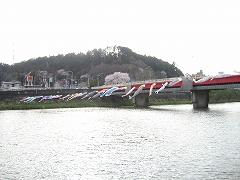 広瀬川流域2012.4.24-2
