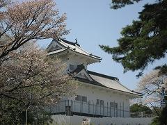 青葉山公園2012.4.28-3