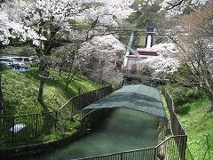 三居沢2012.4.28-1