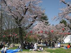 西公園2012.4.28-1