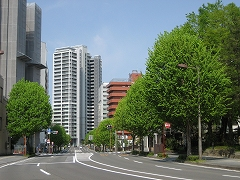 五ツ橋通2012.5.6