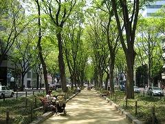 定禅寺通2012.5.6