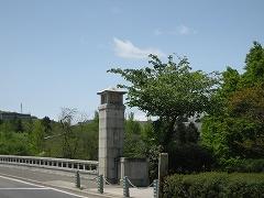 青葉山公園2012.5.12-1