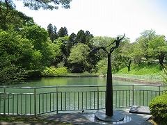 青葉山公園2012.5.12-2