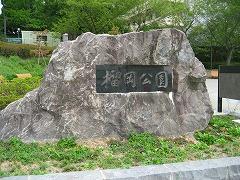 tsutsuji01