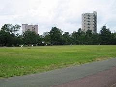 tsutsuji07