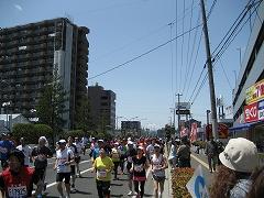 仙台ハーフマラソン2012.5.13-5