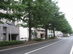 bansuidoori-99