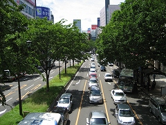 青葉通2012.6.23