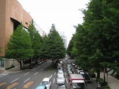 愛宕上杉2012.6.23