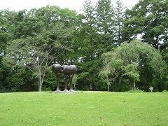 野草園2012.6.24-5