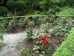 円通院2012.7.8-4