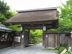 円通院2012.7.8-6