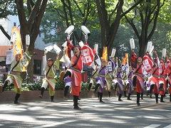 michinokuyosakoi2-5