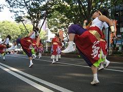 michinokuyosakoi2-13