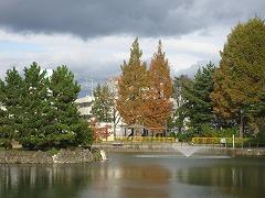 小松島公園2