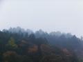 雨で霞む山