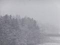降り頻る雪、足元は水雪