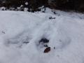 カモシカの谷から這い上がった足跡