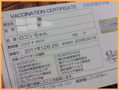 NEC_0417_20111204204910.jpg