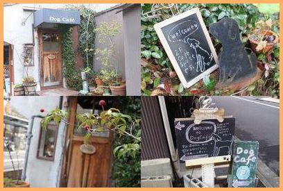 dogcafe-1.jpg
