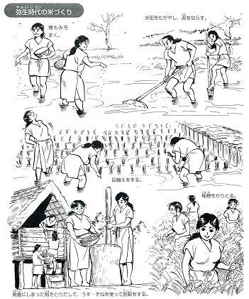 米作りの四季