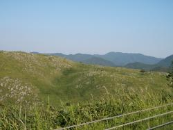 20100918_akiyoshi2.jpg