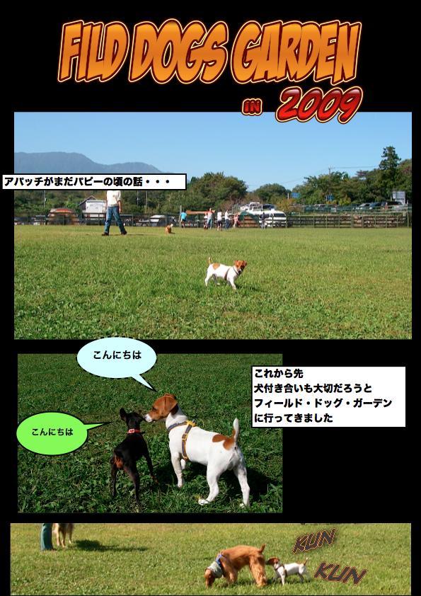 Page_1_convert_20111111143803.jpg