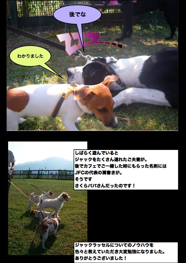 Page_5_convert_20111111144048.jpg