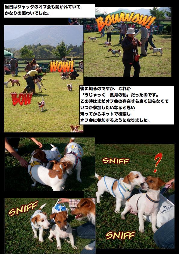 Page_6_convert_20111111144109.jpg