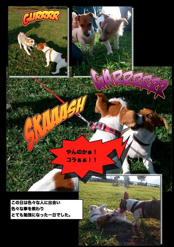 Page_7_convert_20111111144130.jpg