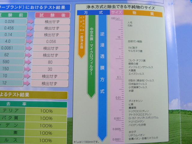 P1010149.jpg