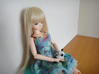 DSC00537_リサイズ