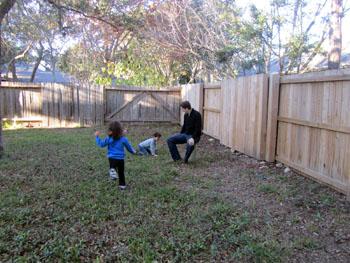 backyard120110.jpg
