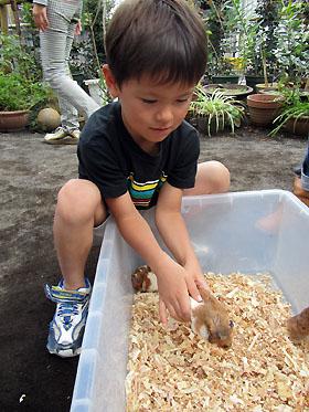 hamster111009.jpg