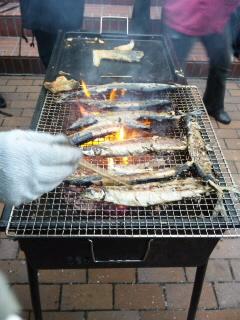 101018秋刀魚