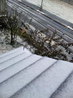 101028初雪