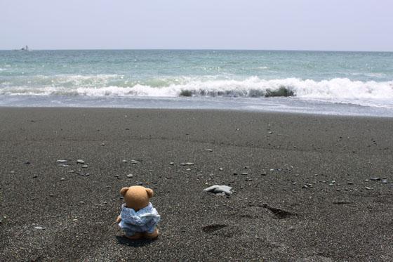 波を見る。国府津海岸