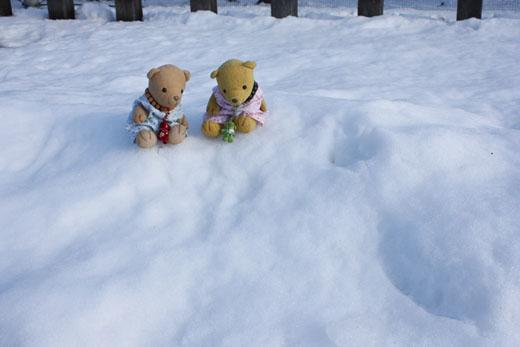 荒尾駅ホームの雪と100103