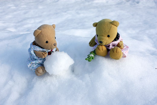 雪だるくま、つくろう。