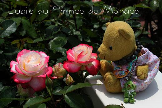 Jubile du Prince de Monacoを見る