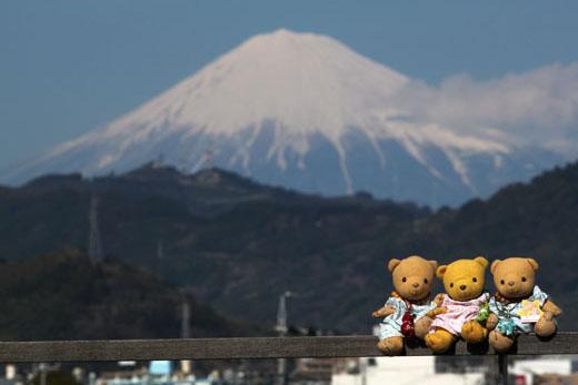 IMG_1049・富士山と