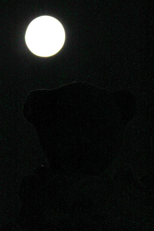 9月20日の月を見る