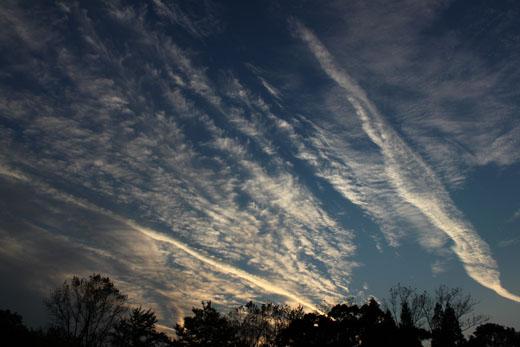 駿府公園から西の空と雲