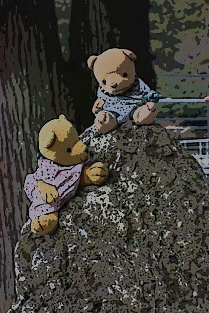 さざれ石に登る