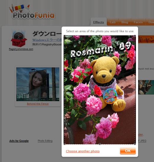 PhotoFunia-Behind the Fence - Rosmarin - Select