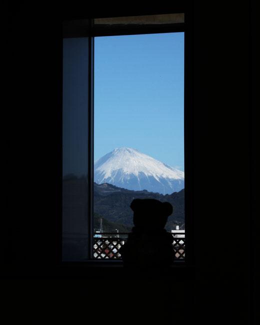 101119 富士山・掛け軸様