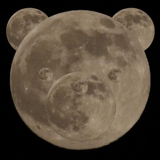 月によるくま